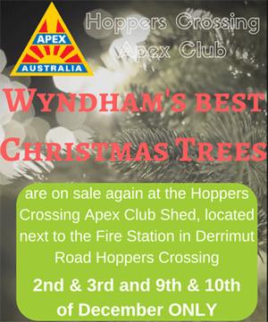 Apex Christmas Trees information